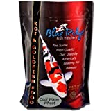 Blue Ridge Cool Water Wheat Germ Koi Fish Food - 25 lbs. (Large Pellet) with BONUS Exclusive MaxPonds Magnet Calendar