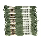 DMC 6-Strand Embroidery Cotton Floss, Dark Pine Green