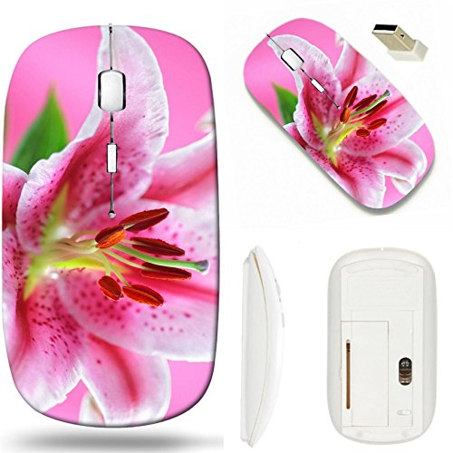 MSD Wireless Mouse White Base Travel 2.4G Wireless Mice with USB Receiver, Noiseless and Silent Click with 1000 DPI for notebook, pc, laptop, computer, mac book design 25087700 Stargazer lily isolated