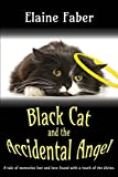 Black Cat and the Accidental Angel