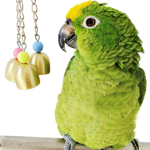Bird Cage Toys : Bwogue bell bird toy parrot cage toys cages african grey