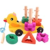 Pull Along Toy,Wooden Duck Toy with Educational Peg Puzzle for Toddlers' Shape & Color Sorting