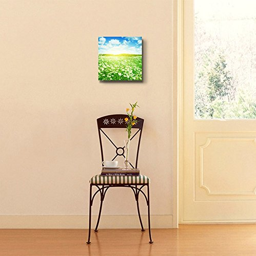 Beautiful Scenery Landscape with Daisies on a Sunny Summer Day Wall Decor