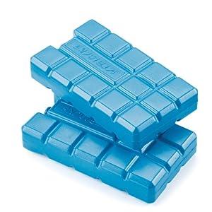 Twin Freezer Pack 2 x 200g Ice Blocks: Amazon.co.uk