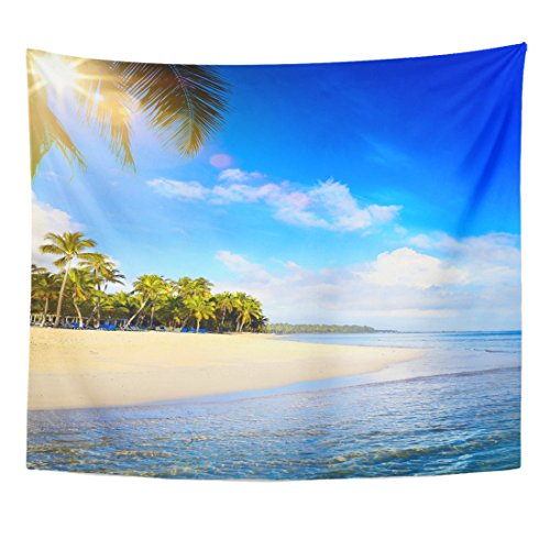 TOMPOP Tapestry Barbados Summer Tropical Beach Peaceful Vacation Goa Home Decor Wall Hanging for Living Room Bedroom Dorm 50x60 Inches by TOMPOP