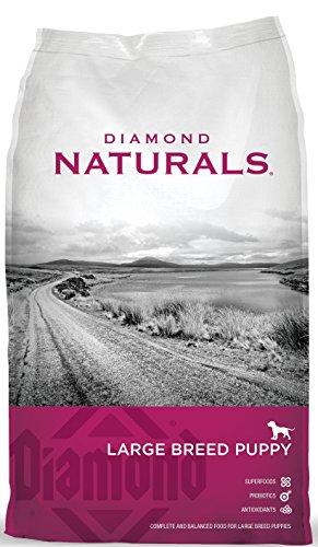 Diamond Naturals Dry Food for Puppy, Large Breed Lamb and Rice Formula, 20 Pound Bag
