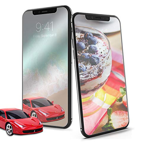 Buy mirror screen protector iphone x