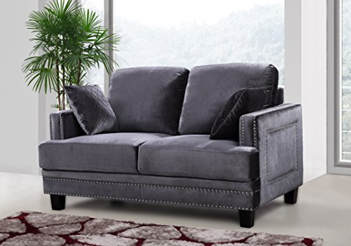 Meridian Furniture Ferrara Velvet Nailhead Loveseat, Grey