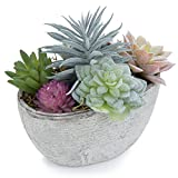 MyGift Assorted Artificial Succulent Plants in Rustic Textured Pulp Pot