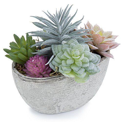 MyGift Assorted Artificial Succulent Plants in Rustic Textured Pulp Pot by MyGift