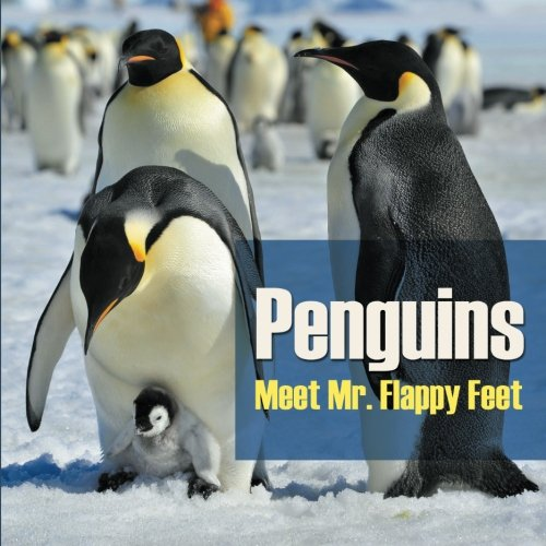 Download Penguins - Meet Mr. Flappy Feet PDF