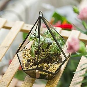 NCYP 5.3 inches Hanging Glass Terrarium Modern Artistic Wall Tears Shape Diamond Geometric Polyhedron Air Plant Holder Desk Planter DIY Centerpiece Vase Succulent Flower Pot (Plants not Included) 2