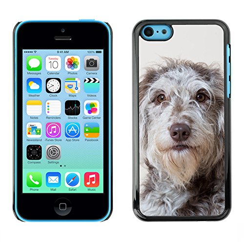 Premio Sottile Slim Cassa Custodia Case Cover Shell // F00011961 chien // Apple iPhone 5C
