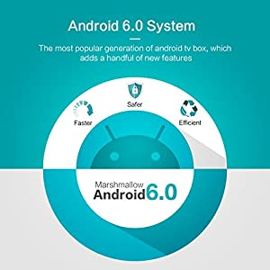 TICTID [2GB DRR3/16GB EMMC] RK MAX Android 6.0 TV Box Quad-Core Support VP9 H.265 HEVC Video Decode 4K/2K Full HD Output/ HDMI2.0/ 100M Ethernet/ 2.4G WIFI/ Bluetooth 2.1 Smart TV Box