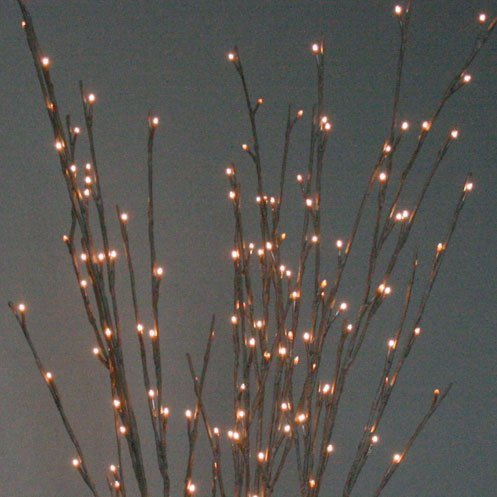Lighted Bouquet (The Light Garden WLWB60 Electric/Corded Willow Branch with 60 Incandescent Lights, 20)