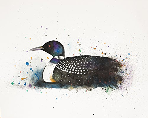 Loon Watercolor Art Print Minnesota State Bird Loon Cabin Art by Artist Amber McDowell (Loon Water)