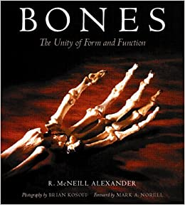 Bones: The Unity Of Form And Function by R. McNeil Alexander (2000-10-25)