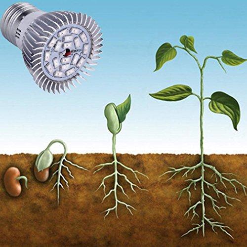 KingWo LED Grow Light, 8W E27 LED Flower Seed Plants Hydroponic Grow Light Lamp Bulb Full Spectrum