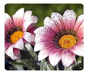 Decorative Mouse Pad Art Print Landscape and Plants Best