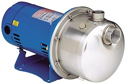 Goulds Centrifugal Pump (Goulds LB1035 Centrifugal Pump)