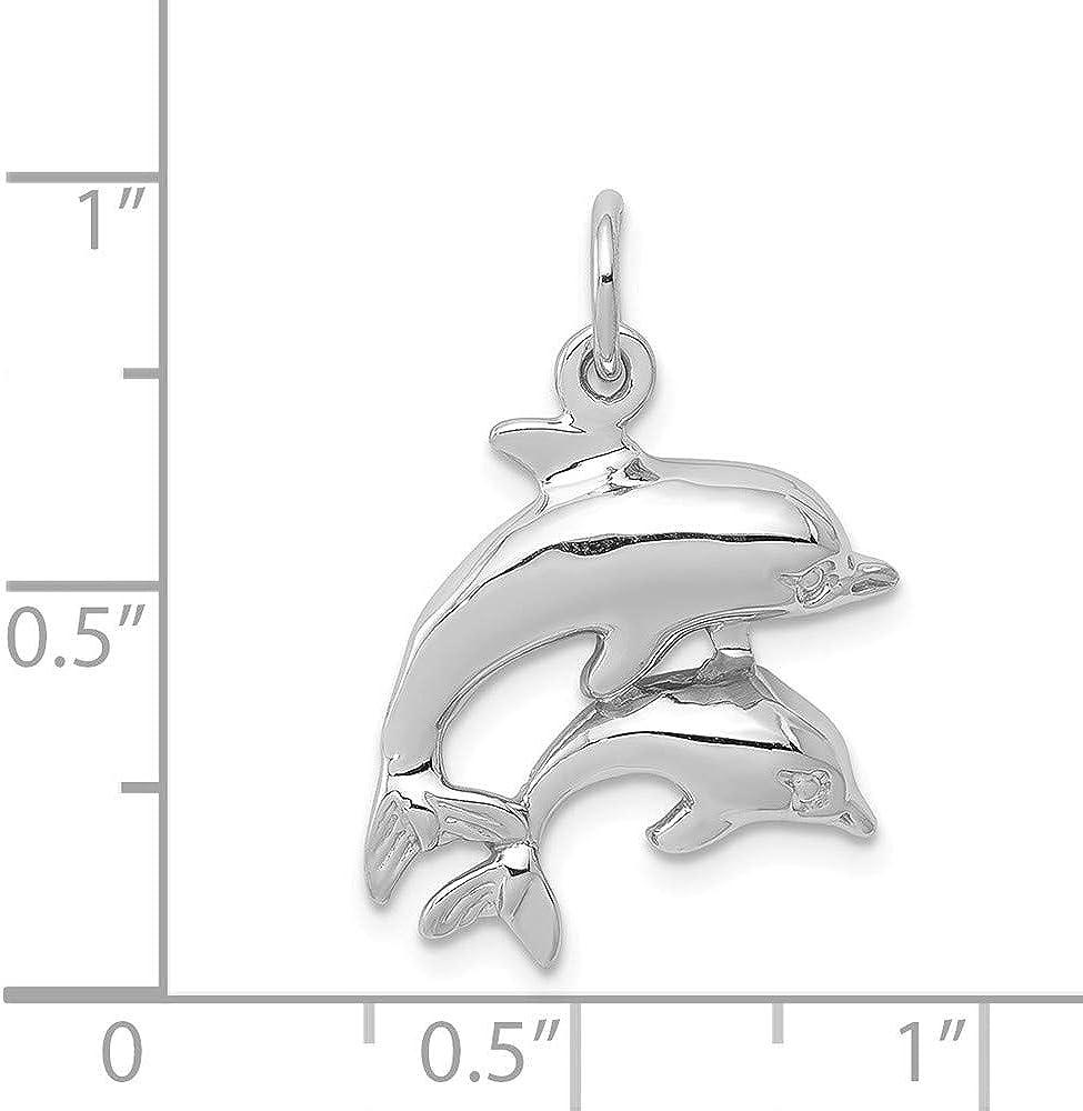 14k White Gold Dolphin Charm