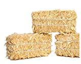 Hay Bales - Mini Floral - Real Hay for Crafting - 2'' Long - Quantity of 12#101-0802