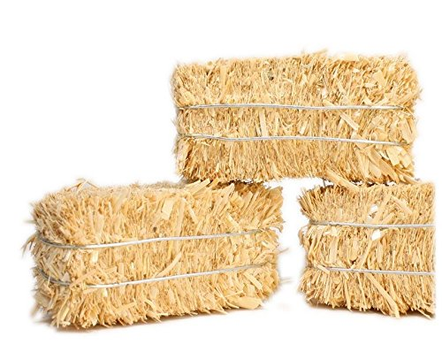 Hay Bales - Miniature Floral - Real Hay for Crafting - 2'' Long #101-0802 by Meyer Imports