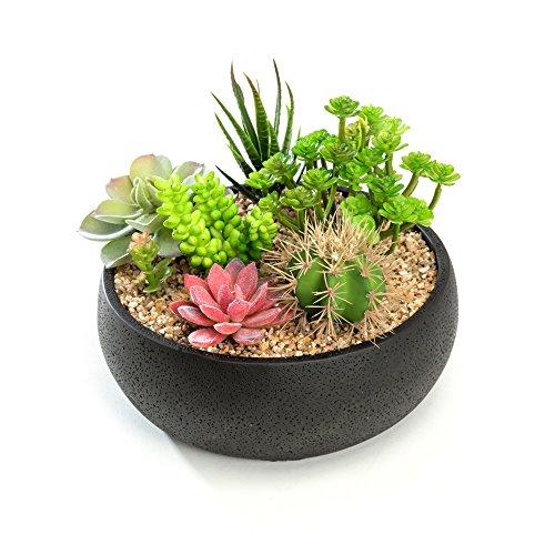 Nattol Succulent Planter, 8.9 inch Modern Style Round Cement Succulent Plant Pot/Cactus Holder (Black)