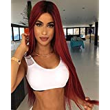 TSNOMORE Ombre Color Cosplay Wigs Long Wigs for Women Heat Resistant Women Wig (Ombre Red Wine)