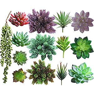 Lasimonne 14 Pcs Faux Succulent Assorted -Fake Succulent Plants,Unpotted Fake Plants for Decoration,Artificial Succulents Picks, Fake Succulent Bouquet 48