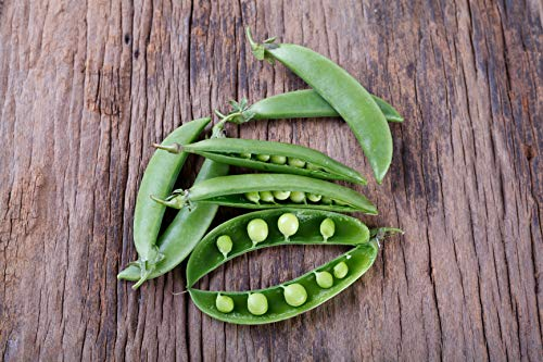 Super Sugar Snap - Pea Seeds