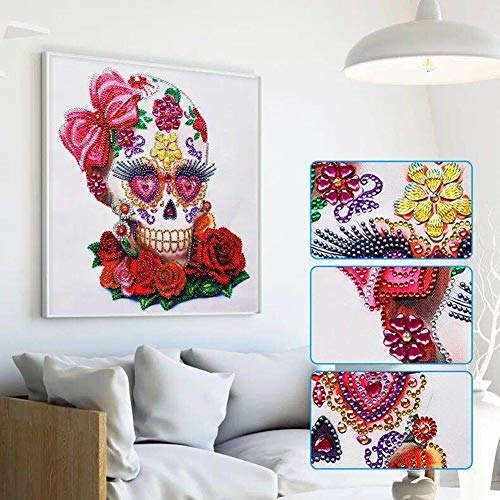 Aimilaly DIY 5D Special Shaped Diamond Painting by Number Kits, Floral Skull Rhinestone Embroidery Cross Stitch Pictures…