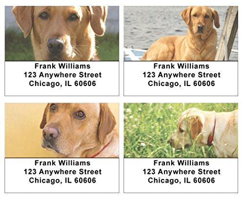 Yellow Address Labels - 8