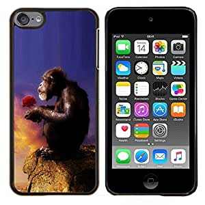 For Apple iPod Touch 6 6th Generation - Monkey Ape Love Nature Symboli Art Case Cover Protection Design Ultra Slim Snap on Hard Plastic - God Garden -