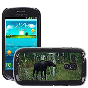 Etui Housse Coque de Protection Cover Rigide pour // M00134118 Moose Bosque Salvaje Naturaleza Animal // Samsung Galaxy S3 MINI i8190