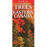 Quick Reference to Trees of Eastern Canada