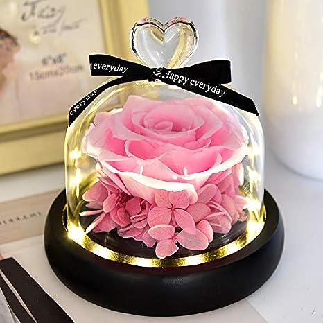 Anniversario Di Matrimonio Vacanza.Qyhss Rosa Eterna Rosa La Bella E La Bestia Rose Incantate Con