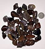 StarStuff.Rocks Natural Authentic Tumbled Stone By The Pound for Crafts, Decoration, Fairy Gardens, more! (Glassy Petrified Wood)