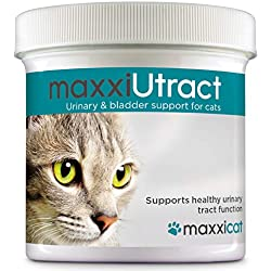 maxxicat - maxxiUtract Urinary and Bladder Control Supplement for Cats to Prevent UTI Recurrence - Cranberry Formula - Powder 2.1 oz