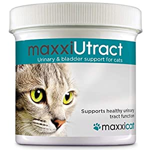 maxxicat – maxxiUtract Urinary and Bladder Supplement for Cats – Helps Prevent UTI Recurrence, Support Feline Bladder Control and Urinary Tract System Health – Cranberry Formula Powder 2.1 oz 16