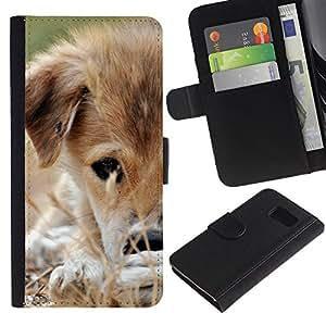 eJoy---La carpeta del tirón la caja de cuero de alta calidad de la PU Caso protector - Samsung Galaxy S6 - --Mongrel Puppy Brown White Grass Dog