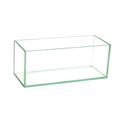 Amazon.com Royal Imports Flower Glass Vase Decorative Centerpiece for Home or Wedding Oblong Rectangle Shape 10\  Long 4\  Hx4 W Opening Clear Home \u0026 ...  sc 1 st  Amazon.com & Amazon.com: Royal Imports Flower Glass Vase Decorative Centerpiece ...