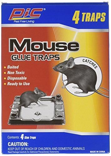 pic trap - 7