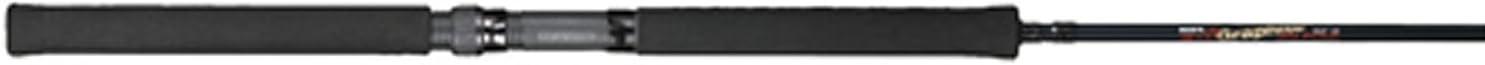 BnM Bucks Graphite Jig Pole 10 Foot 2 Piece BGJP102
