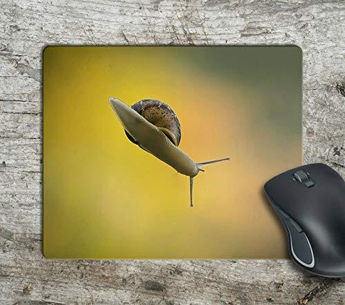 Bottom of A Snake Funny Computer Antislip Mousepad Mouse Pad Mouse Mat Matt -