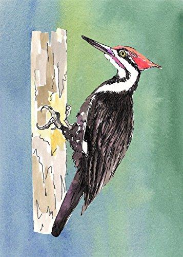 Original Audubon Artwork - 8