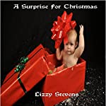 A Surprise For Christmas | Lizzy Stevens