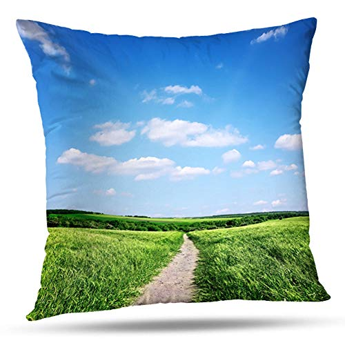 (KJONG Beautiful Summer Landscape Sky Blue Cloud Sunny Green Grass Road Field Square Decorative Pillow Case 20 x 20inch Zippered Pillow Cover for Bedroom Living Room(Two Sides Print))