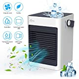 Personal Air Conditioner, ICETEK Portable Air Conditioner for Small Room, Pets, Camping, Outdoor