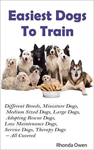 Easiest Dogs To Train